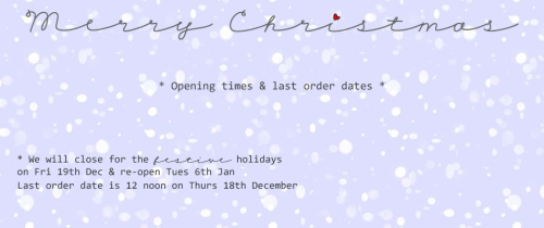 Christmas Holidays Closing Dates